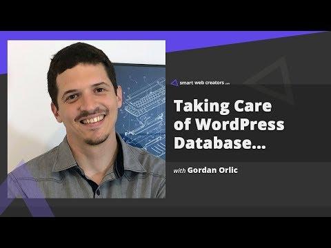 Taking Care of WordPress Database for faster websites with Gordan Orlic